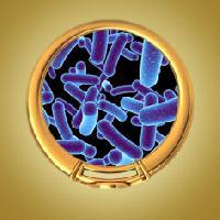 Biological Tests Service