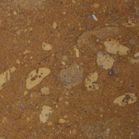 Star Gold Indian Marble Stone