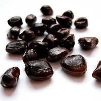 Tamarind Kernel Seeds
