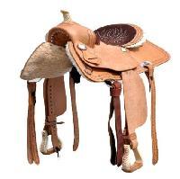 Training Saddles