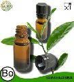 Labeling Tea Tree Essential Oil