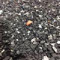 PA66 Nylon Mix Color Regrind Scrap