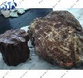 Red Petrified Wood Stone