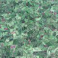 Green gem stone slab