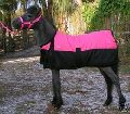 Waterproof Turnout Blanket