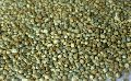 Dried Millet Seed
