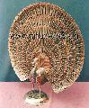 Brass Metal Decorative Peacock