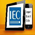 IEC Consultant Services