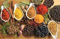 Indian Spices - pepper powder