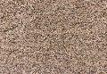 Lakshmi Brown Granite