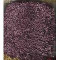 Silk Bloom Carpets