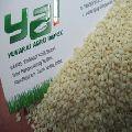 Hulled Sesame Seed