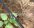 Drip Irrigation Pipe