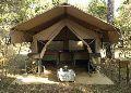 Jungle Safari Resort Tent