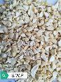 S.W.P Grade Cashew Nuts