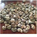Indian Raw Cashew Nuts