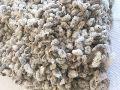 Natural Cotton Seeds