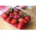 Natural Fresh Strawberry
