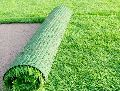 Realistic Natural Lawn Carpet Grass
