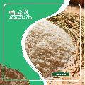 Premium Sona Masoori Raw Rice