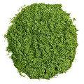 New Crop Spray Dried Spinach Powder