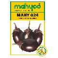 MAHY 024 Hybrid Brinjal Seeds
