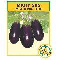 MAHY 205 Hybrid Brinjal Seeds