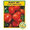 MAHY 401 Hybrid Tomato Seeds