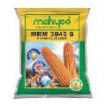 MRM 3845 S Hybrid Maize Seeds