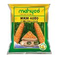 MRM 4050 Hybrid Maize Seeds