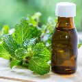 Mentha Pipperita Oil