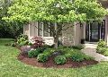 Horticulture Landscaping Services