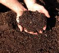 Agricultural Organic Compost Fertilizer