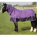 Medium Weight Turnout Horse Rugs