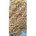 Indian Wheat Grain