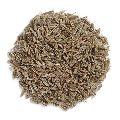 Natural Cumin Seeds
