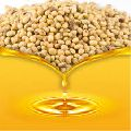 Organic Crude Soybean Oil