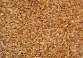 Wheat Animal Feed