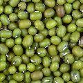 Green Moong Gram