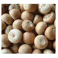 Organic Betel Nuts