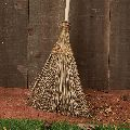 Coconut Outdoor Broom