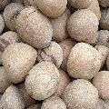 Whole Copra Coconut