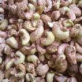 SW Cashew Nuts