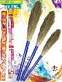 Aarti Grass Brooms