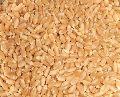 Tukdi Wheat Seeds