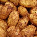 Fresh kufri badshah potato