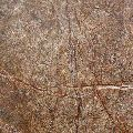 Rain Forest Brown Marble 03