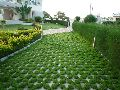 Designer landscaping service
