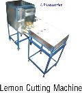 Vegetable Paste Machine
