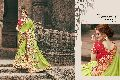 Double Shade Ethnic Saree